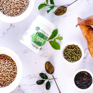 Resistant starch ingredients of Probiotic Foods