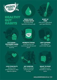 Probiotic Foods Healthy Gut Habits